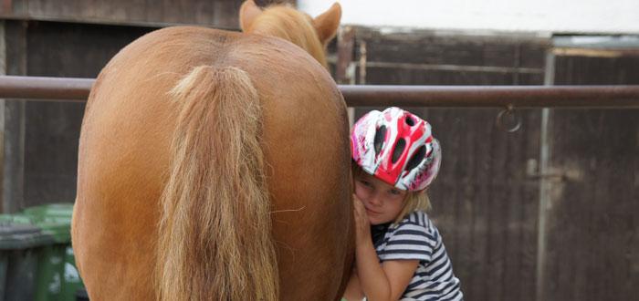 Pferdeliebe.jpg
